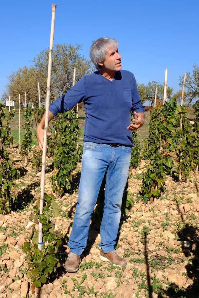 A Randazzo per conoscere i Vigneri di Salvo Foti