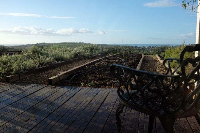 Benvenuti alla Foresteria Planeta, dove cucina e ospitalità sono di casa